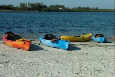 Kayaks single Rentals