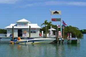 rent boat in tavares