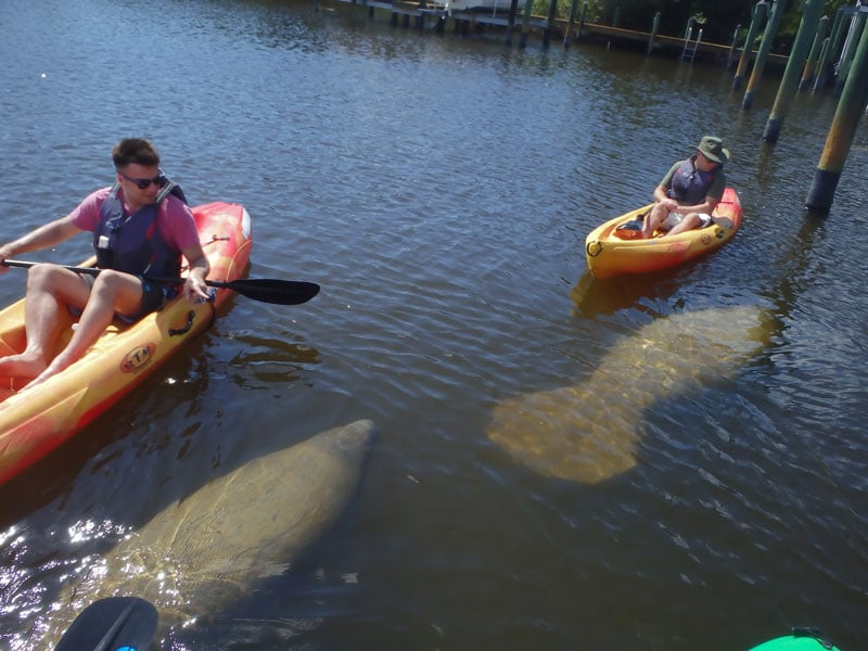 renting kayak fort myers