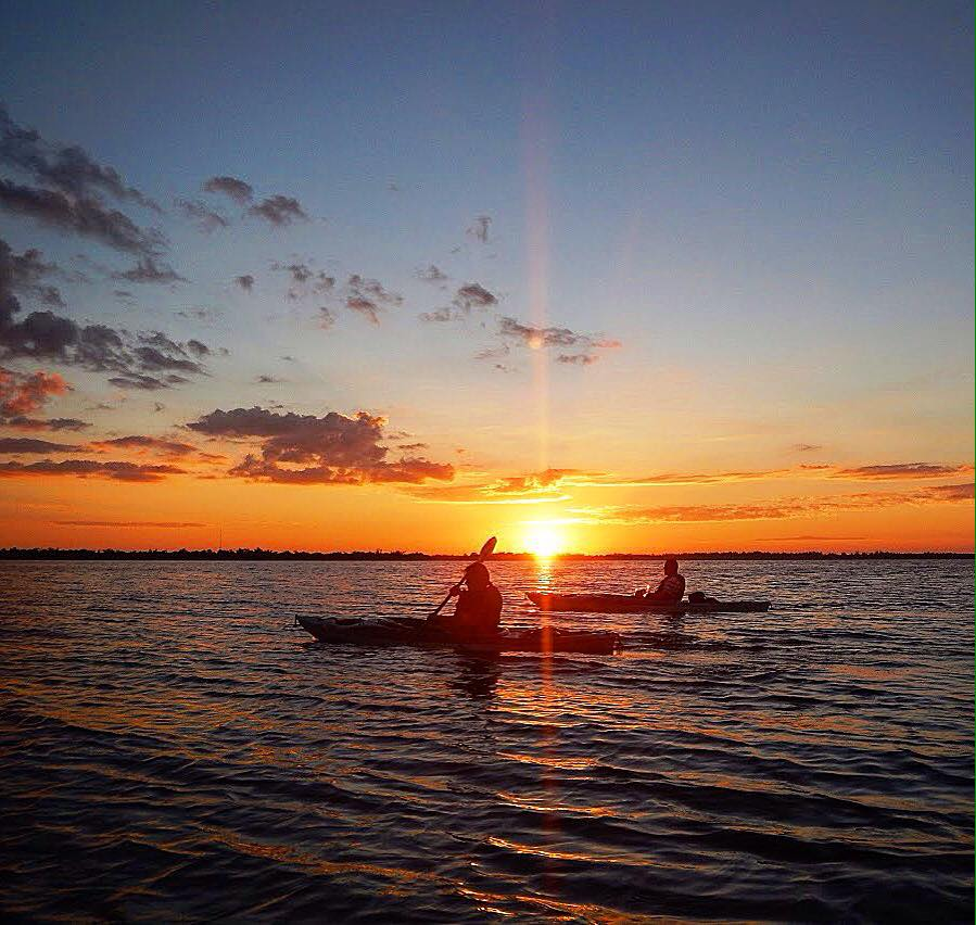 gulf coast kayak tour