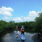 gulf coast paddleboard rental