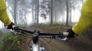 bicycle rental near me this weekend