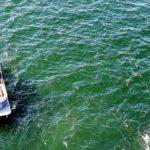 pontoon boat rentals santa fe river fl