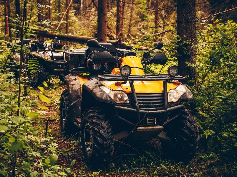 Osceola National Forest ATV Trails
