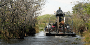 airboat ride things to do