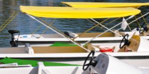 pontoon boats near me