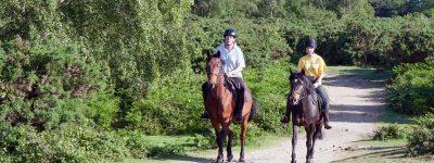 horseback riding rentals